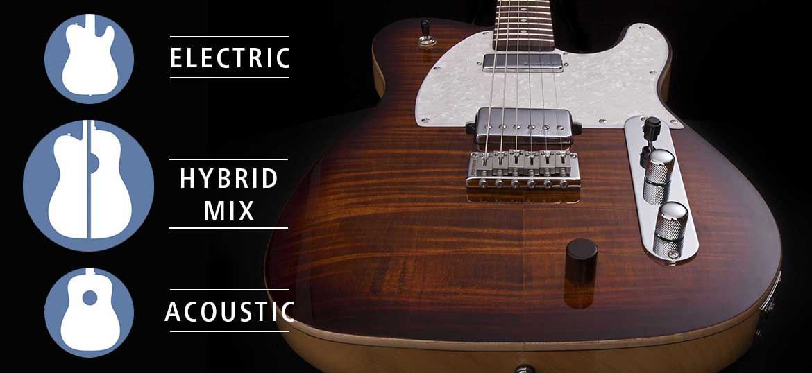 Hybrid Electric Guitar
